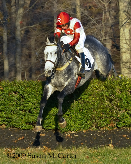 Slip Away, steeplechase horse racing