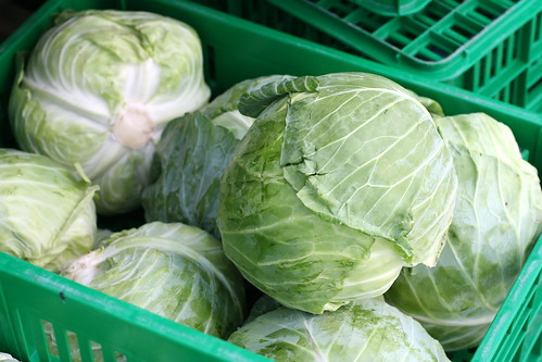 Dubai Giant Cabbage
