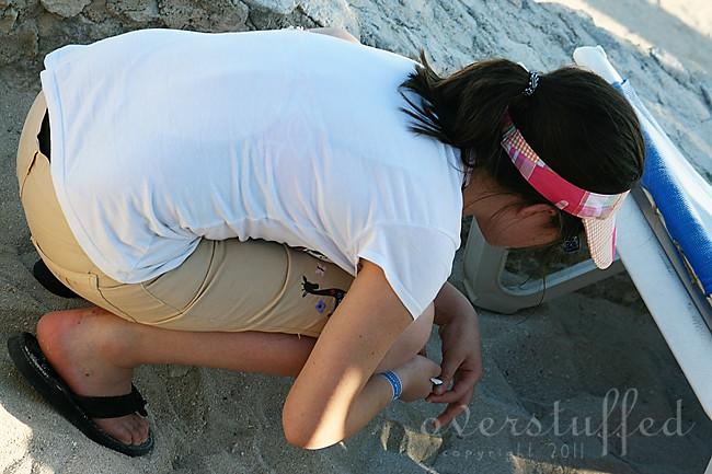 She Sees Sea Shells