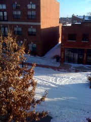 snowcopalypse2011