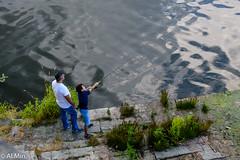 learning to fish (al.min) Tags: firenze arno pescaia sniccolò sanpei
