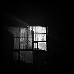 ...and I'll see it through... (Suite116) Tags: window windowinthesky love summer blackandwhite sky doubleexposure illseeitthrough texas light sun windowpane finestra estate sole black hipstamatic rayoflight hot caldo raggiodiluce blackwhite blackout throughthewindow phonecamera tetti rooftops hipstamatic337 milano cittàstudi piola summerinthecity