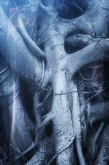 The Ghosts of the Banyan (axis68) Tags: sculpture mauritius naturalworld ghost abstract art banyantree tree