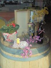 1464 (en-ri) Tags: pulcino fiorellini little flowers mimosa vaso bottiglie glass bicchiere bottles botte sony sonysti