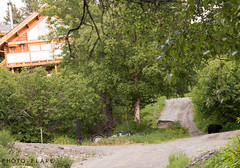 alaska toutr day 5 (18 of 18) (Photo-Flare) Tags: alaska ny newyork personalvacationphotographer phototours photographyfortravelers vacationphotographer wildlifephotographers honeymoonideas
