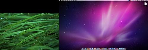 屏幕快照 2010-07-29 上午10.01.32