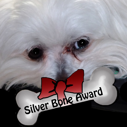Silver Bone