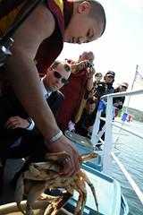 Dilgo Khyentse Yangsi Rinpoche examining a crab during Tsethar, Life Release ceremony, honor guard (in sun glasses), monk photographer, videographer, Buddhists, Vancouver British Columbia, Lotus Speech Canada (Wonderlane) Tags: life release ceremony compassion buddhists videographer vancouverbritishcolumbia 7825 animalrelease liferelease monkphotographer lotusspeechcanada lifereleaseceremony tsethar dilgokhyentseyangsirinpocheexaminingacrabduringtsethar examiningacrabduringtsethar honorguardinsunglasses semchentsetartangpa