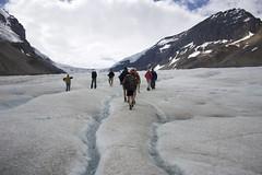 (abby martell) Tags: people snow mountains ice jasper columbia glacier alberta fields banff