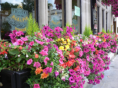 fleurs au ale and pie house.jpg