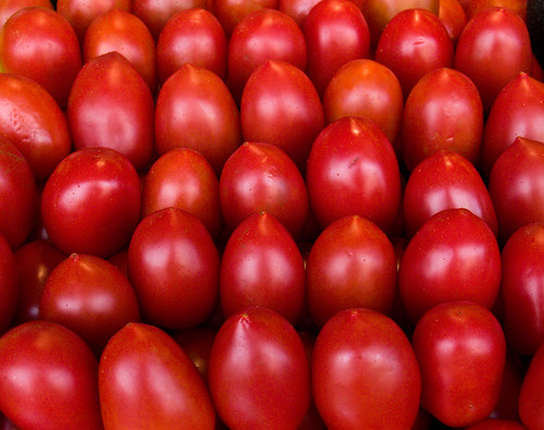 Tomatos - Roma