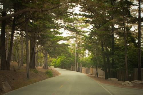 Monterey Sept 2010 130