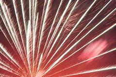 rising sun. (Caitlin Ansley) Tags: fireworks2010
