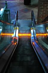 Going down...123/365 (Marc Vosburgh) Tags: brick tampa florida escalator downstairs goingdown centroybor flickrgolfclub