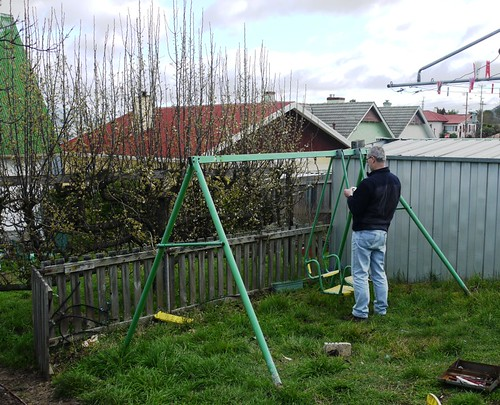 Swing Set Becomes Berry Patch Part 1