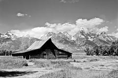 Famous Moulton Barn black & white (Donleen) Tags: summer blackandwhite bw mountains west nationalpark wyoming tetons grandteton grandtetonnationalpark mormonrow moultonbarn westtrip2010