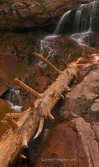 Fallen Wood (Dwood Photography) Tags: water waterfall log colorado south canyon falls seven springs fallen coloradosprings sevenfalls cheyenne 2010 southcheyennecanyon coloradosprings2010 dwoodphotography dwoodphotographycom