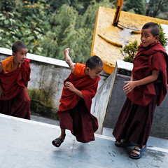 Playing monks (Olivier Th) Tags: voyage trip travel summer vacation people india mountain clouds montagne canon children temple eos photo kid asia child buddhist indian hill colonial reporter culture monk buddhism monastery monsoon british indians asie himalaya t nuages hindu enfant darjeeling indien personne thao colony monastre colline inde reportage druk monastry gompa bouddhisme mousson indiens colonie britannique choeling biku moine indienne  republicofindia moonson journalisme coloniale bouddhiste darjiling sangak indiennes photoreportage bhikkhu flanc bengaleoccidental  bhrat ganarjya sangag bhiku