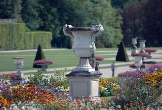 2010.08.22.186 VAUX-le-VICOMTE - fleurs du parterre fleuri