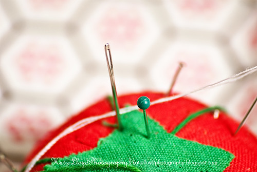 Pin and Needle - wm