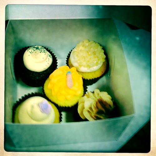 Sugadeaux cupcake sampler!!!