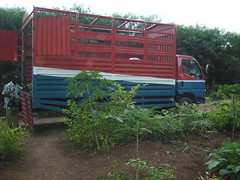 Truck for transporting seedlings