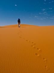 The long way (Topyti) Tags: sand desert dune maroc marocco gazelle touareg deserto orme sabbia aicha merzouga