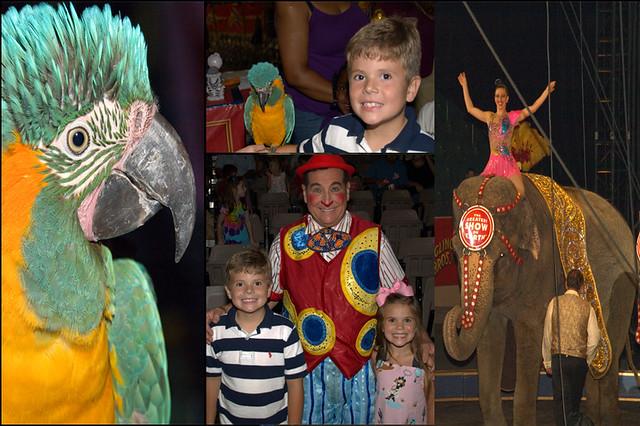 circus2010