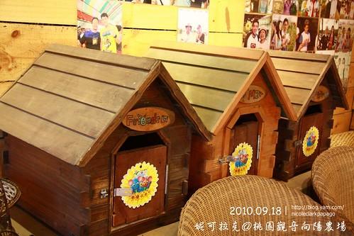 桃園觀音向陽農場20100918-100