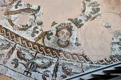 MOSAICI PALEOCRISTIANI AREA DUOMO TREVISO (aldofurlanetto) Tags: treviso mosaici