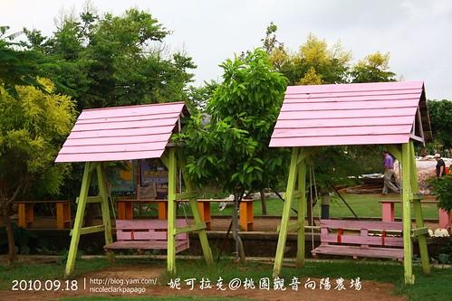 桃園觀音向陽農場20100918-116
