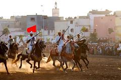 Fantasia 8 (a_elkafi) Tags: horse cheval morocco maroc fantasia safi   fantazia
