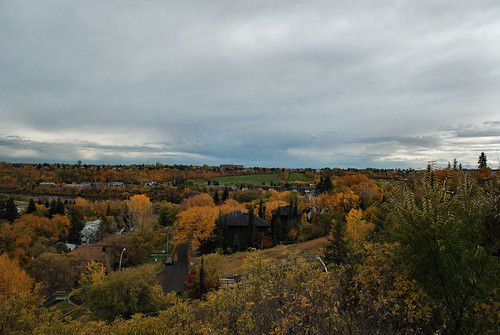Fall Colours