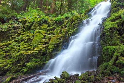 [フリー画像] 自然・風景, 滝, アメリカ合衆国, オレゴン州, 201009301900
