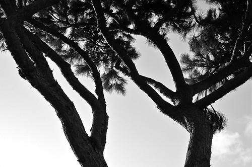 sobre el cielo de Cádiz - III - abrazados by eMecHe