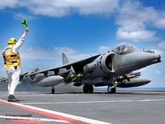 RAF GR7A Harrier Prepares for Takeoff from HMS Invincible (Defence Images) Tags: uk military free british aircraftcarrier oman defense defence flightdeck atsea harrier fre hmsinvincible gr7 aircrafthandler laserguidedbomb marstrike05 exercisemagiccarpet enhancedpaveway2