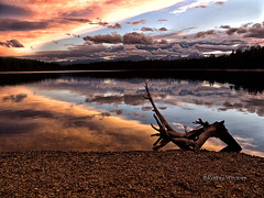 Holland Lake, Montana Sunset (kweaver2) Tags: sky lake reflection nature water clouds landscape photography log montana driftwood fineartphotography hollandlake mywinners olympuse520 kathyweaver