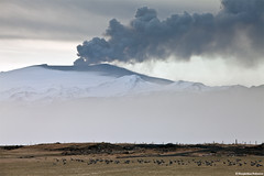 Eyjafjallajkull erupting volcano - The Pink-footed geese arrival (skarpi - www.skarpi.is) Tags: sunset cloud snow black ice dark island volcano lava iceland melting sheep farmers farm smoke glacier crater lamb lambs beast ash vulcan farmer lightning volcanoes sland rsmrk fumes markarfljt mork ggjkull jkull thorsmork lightnings fimmvruhls eyjafjallajkull jokull fljtshl mrk eyjafjallajokull kross hvolsvllur fimmvorduhals krossa gigjokull fljotshlid skarpi hvolsvollur markarfljot