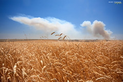 Fields of Gold (djniks) Tags: field angle farm wheat smoke harvest polarizer palouse sigma1020 cplfilter canon40d