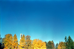 Strong blue (perminna) Tags: autumn trees color film leaves minolta iso400 fallcolors bluesky september autumncolors 135 oulu analogphotography fujisuperia400 c41 homedeveloped syyskuu himatic7s diycolor tetenal epsonv700 rokkorpf45mmf18