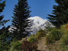 First view of Rainier from Shriner Peak trail.