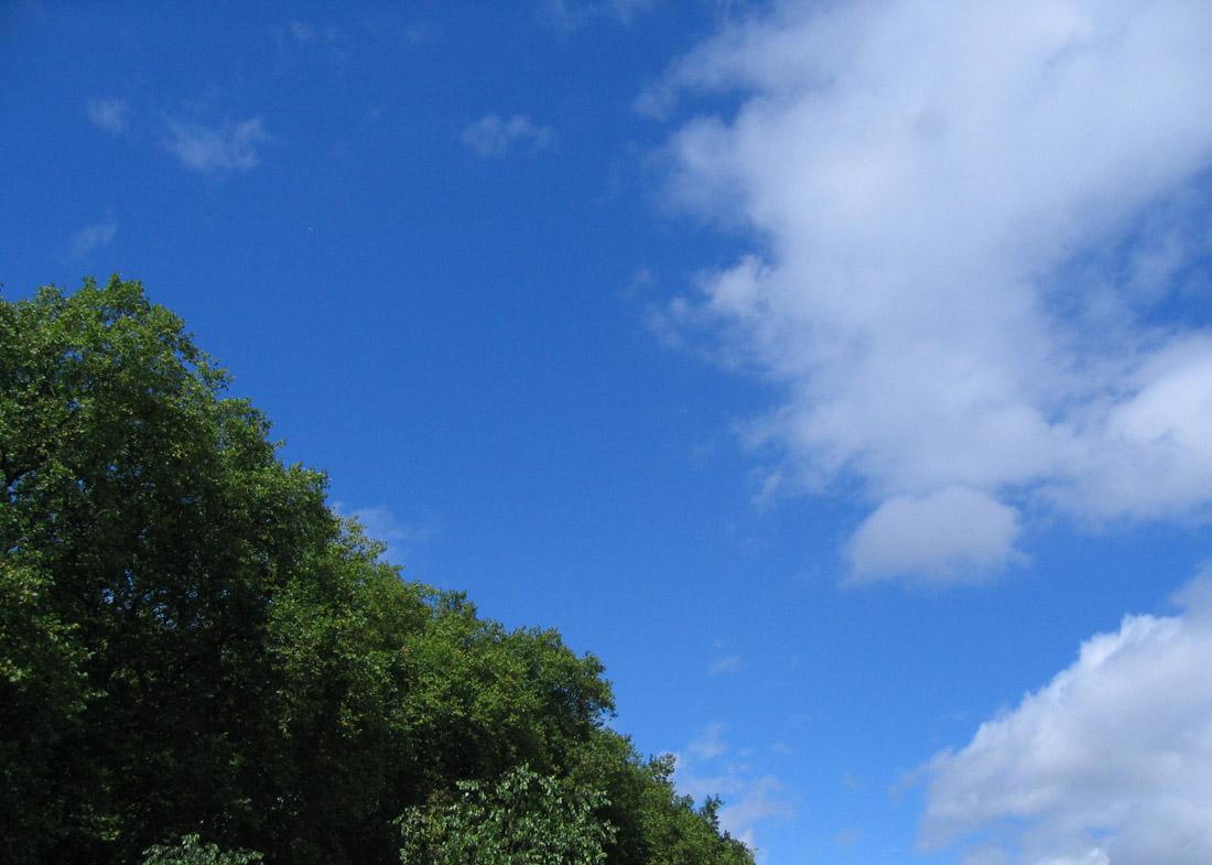 céus azuis // blue skies