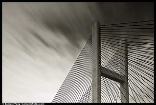 Bridge Tower and Cables