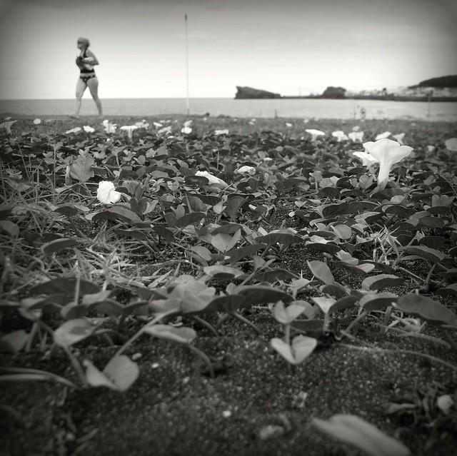 Beach Scene #P1210126
