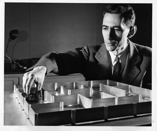 Labyrinthmouse Theseus / Claude Shannon