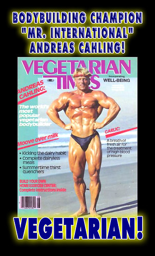 Vegetarian Bodybuilder Andreas Cahling Photo! - Vegan Times Healthy Food Recipes - No Paleo Malnutrition No Crossfit Failure No Meat Cancer Baby Risk