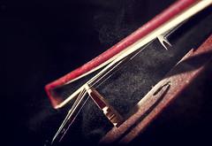 My Violin (Jess Gutirrez Gmez) Tags: music canon photography eos colombia jesus violin elite bow musica gutierrez strings msica arco gomez brea xsi medelln polvo cuerdas violn colofonia