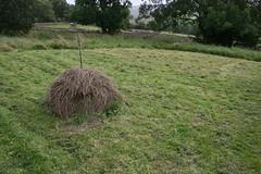 Small haystack