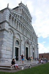 Auf der Wunderwiese in Pisa