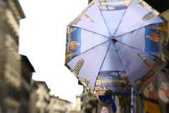 La mia citt 10 e lode (AlexLiverani) Tags: alex skyline la florence ponte pisa mia firenze duomo fnac ombrello fotografo citt vecchio fotografica maratona professionista gigli liverani